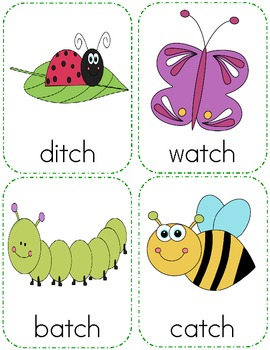 Insect Themed Digraph Writing