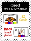 Insect Themed Measurement Cards
