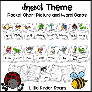 Insect Themed Pocket Chart Pictures and Word Cards