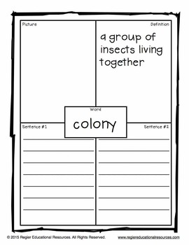 Insects Vocabulary: Tiered Vocabulary Booklets