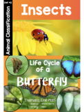 Insect Unit & Butterfly Life Cycle COMBO