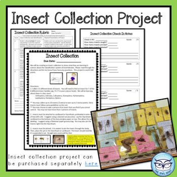 Insect Classification Unit - Power Point, INB notes, Quizzes and Project