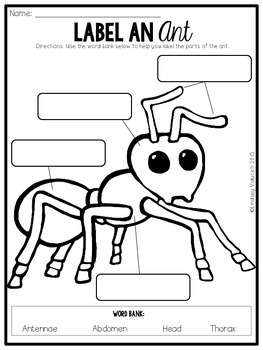 Insect Unit (Writing Lessons ONLY)