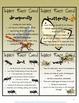 Insects Interactive Activities for Science Stations or Lit
