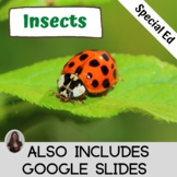 Insect Unit for Special Education