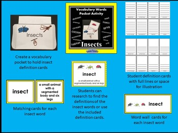 Insect Vocabulary Pocket Activity with Word Wall Cards