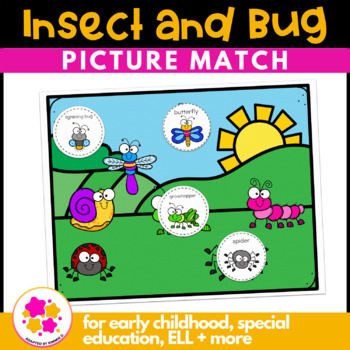 Insect Vocabulary Folder Game for Students with Autism & Special Needs