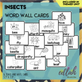 Insect Vocabulary Word Wall Cards (set of 16) - Black & White Version