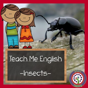 Insect Vocabulary in English - Great For ESL, ELL, Newcomers, and Dual Language