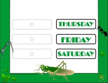 Insect Weekday Chart! Insect Bulletin Board! Bug Theme! Insect Theme!