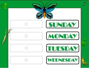 Insect Weekday Chart! Insect Bulletin Board! Bug Theme! In