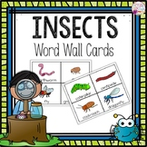 Word Wall Cards: Insects