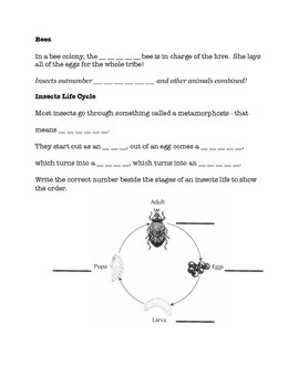 Insect Worksheet to go with Bill Nye's Insect Video