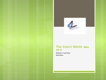 Insect World-Who Am I? In English and Spanish