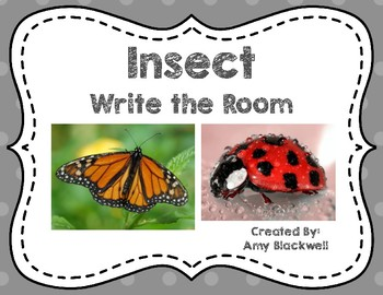 Insect Write the Room