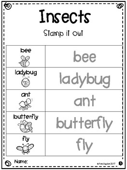 Insect Writing Station