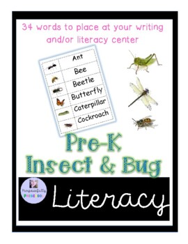 Insect and Bug Word Wall Words