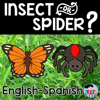 Insect or Spider Fold and Learn