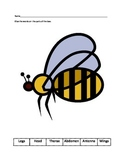 Insect parts assessment