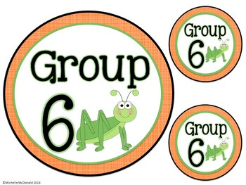 Table & Group Labels: Insect Theme
