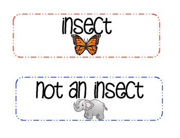 Insect...Or Not?  An Animal Sorting Activity