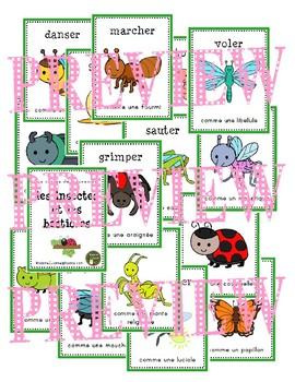 Insectes et Bestioles: les cartes de mouvement (Bugs: movement cards - DPA)