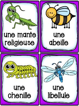 Insectes et bestioles - Cartes de vocabulaire - French Insects and Bugs