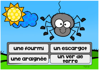 Insectes et bestioles Digital Task Cards • FRENCH