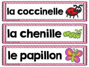 FRENCH Insects Word Wall Cards / Insectes et bestioles - Mots-étiquettes