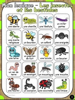 Insectes et bestioles - mur de mots et lexique (23 mots) - French insects