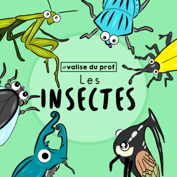Insectes / insects Cliparts