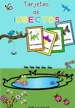 Insectos - Tarjetas de vocabulario