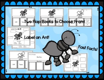 Bugs and Insects Activities Bundle of Flap Books! Spring Activities