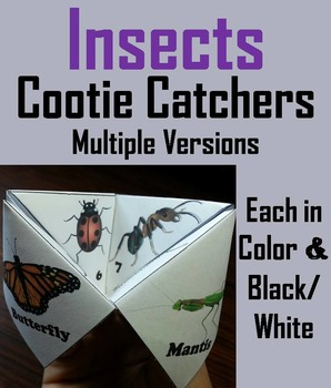Insects Activity/ Foldable (No Prep SCOOT Unit Review Game/ Quiz)