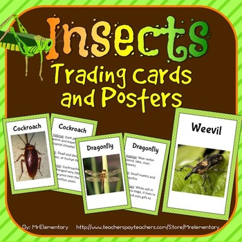Insect Trading Cards and Word Wall Posters