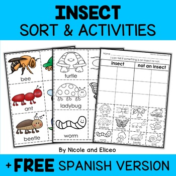 Interactive Insect Activities