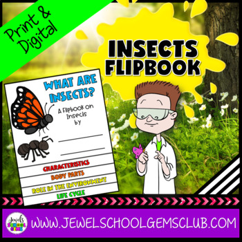 Insects Activities Flipbook