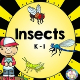 Insects  Science Activities for Kindergaten and First Grades