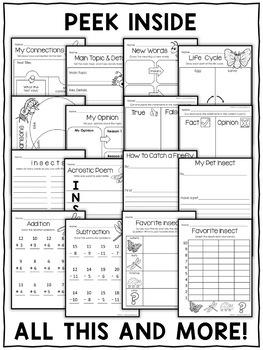 Insect Activities Nonfiction Unit