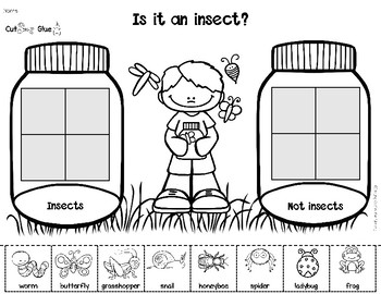 Insects Mini Books