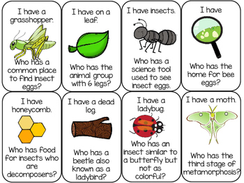 Insect Game