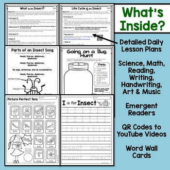 Insect Unit for Kindergarten and First Grade