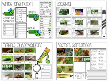 Insects Activities Bundle