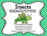 Insect Report - First Grade Informational Writing Activity