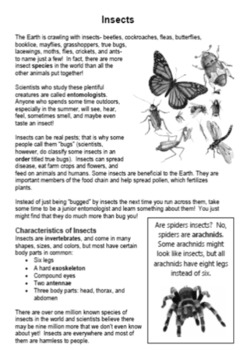 Insects: A Thematic Notebooking Unit