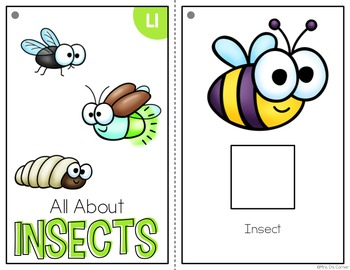 Insects Adapted Books ( Level 1 and Level 2 )