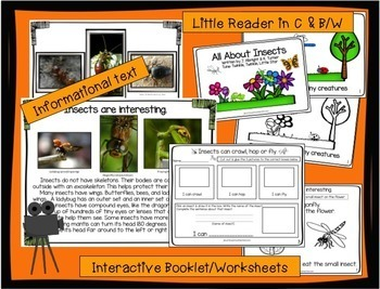 Insects: All About Insects Non-fiction Unit