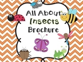 All About Insects: Brochure Project
