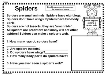 Reading Comprehension Sheets- Insects and Bugs Theme