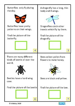 Insects Bugs Interactive Adapted Books 2 levels, Autism Special Education